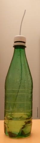 bouteillefinale